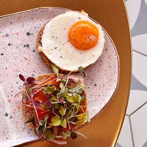 Freshest coffee St Petersburg FL Breakfast Sandwich